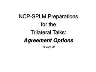 NCP-SPLM Preparations  for the  Trilateral Talks: Agreement Options 19 July 09