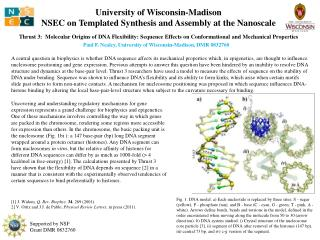 University of Wisconsin-Madison NSEC on Templated Synthesis and Assembly at the Nanoscale