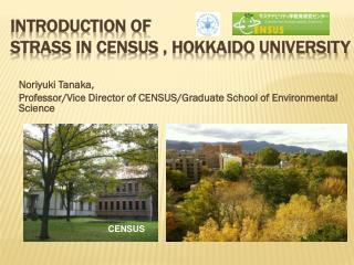 Introduction of  Strass  in CENSUS , Hokkaido University