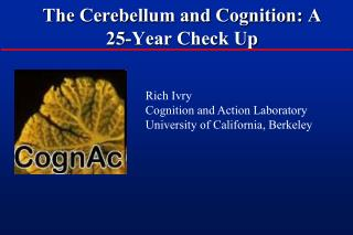 The Cerebellum and Cognition: A 25-Year Check Up