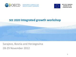 SEE 2020  Integrated growth workshop