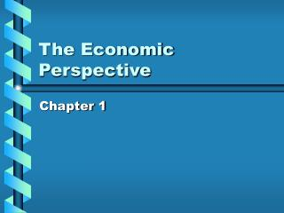The Economic Perspective