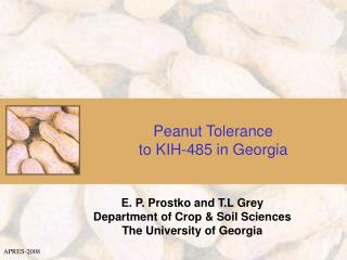Peanut Tolerance  to KIH-485 in Georgia