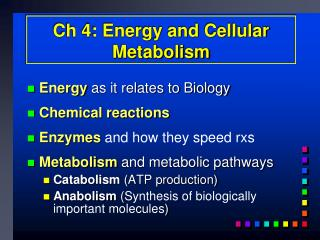 Ch 4: Energy and Cellular Metabolism