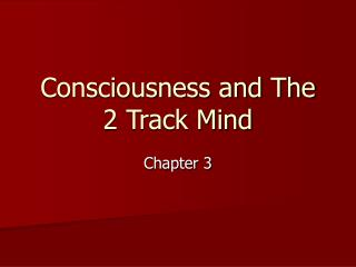 Consciousness and The 2 Track Mind