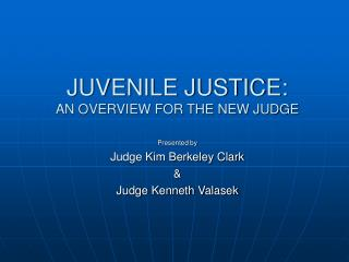 JUVENILE JUSTICE: AN OVERVIEW FOR THE NEW JUDGE