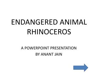 ENDANGERED ANIMAL RHINOCEROS