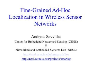 Fine-Grained Ad-Hoc Localization in Wireless Sensor Networks