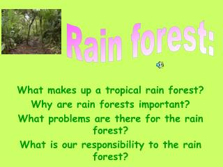 What makes up a tropical rain forest? Why are rain forests important?