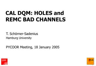 CAL DQM: HOLES and  REMC BAD CHANNELS