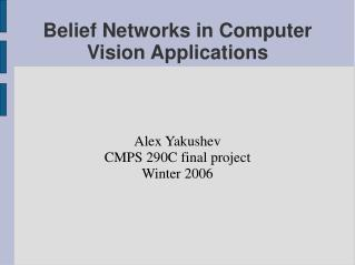 Belief Networks in Computer Vision Applications