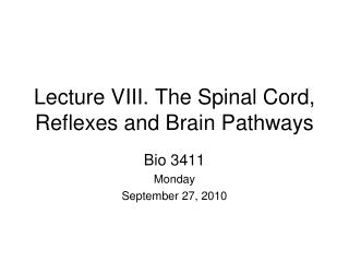 Lecture VIII. The Spinal Cord, Reflexes and Brain Pathways