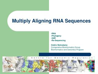 Multiply Aligning  RNA  Sequences