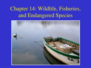Wildlife, Fisheries and Endangered Species