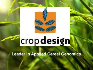 Leader in Applied Cereal Genomics