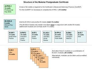 A-PKS.1 15 credits Professional Key Skills