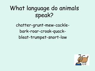 What language do animals speak?