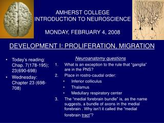 DEVELOPMENT I: PROLIFERATION, MIGRATION