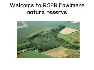 Welcome to RSPB Fowlmere nature reserve