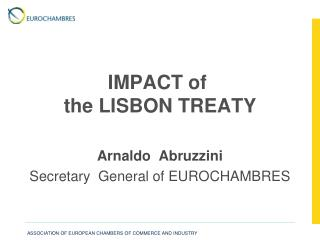 IMPACT of  the LISBON TREATY