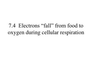 "7.4  Electrons ""fall"" from food to oxygen during cellular respiration"