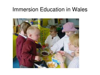 Immersion Education in Wales