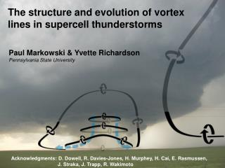 The structure and evolution of vortex lines in supercell thunderstorms