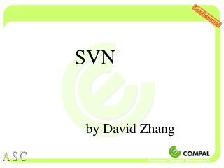 SVN by David Zhang