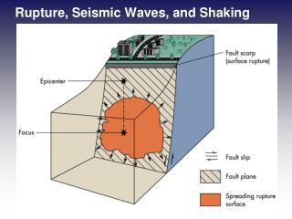 Rupture, Seismic Waves, and Shaking