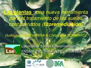 Laboratoire Sols et Environnement ENSAIA-INPL/INRA, Nancy, FRANCIA