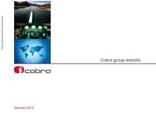 Cobra  group  website