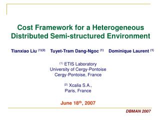 Cost Framework for a Heterogeneous Distributed Semi-structured Environment