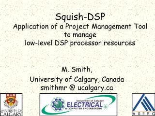 Squish-DSP Application of a Project Management Tool to manage  low-level DSP processor resources