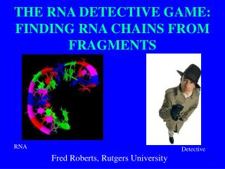 THE RNA DETECTIVE GAME: FINDING RNA CHAINS FROM FRAGMENTS