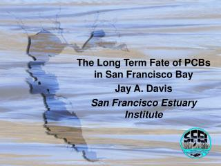 The Long Term Fate of PCBs in San Francisco Bay Jay A. Davis San Francisco Estuary Institute