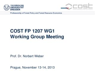 COST FP 1207 WG1  Working Group Meeting