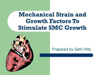 Mechanical Strain and Growth Factors To Stimulate SMC Growth