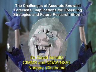 The Challenges of Accurate Snowfall  Forecasts:  Implications for Observing  Strategies and Future Research Efforts