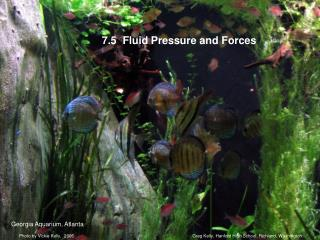 7.5  Fluid Pressure and Forces