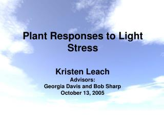 Plant Responses to Light Stress