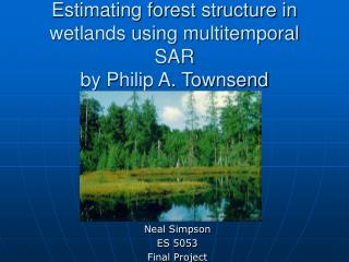 Estimating forest structure in wetlands using multitemporal SAR  by Philip A. Townsend