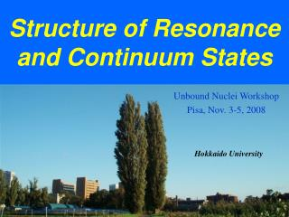 Structure of Resonance and Continuum States