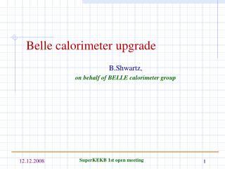 Belle calorimeter upgrade