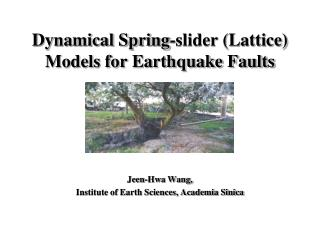 Dynamical Spring-slider (Lattice) Models for Earthquake Faults