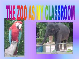 THE ZOO AS MY CLASSROOM