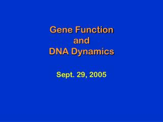 Gene Function and DNA Dynamics