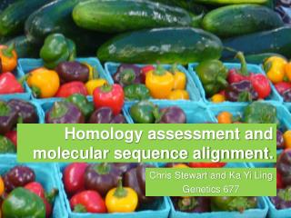 Homology assessment and molecular sequence alignment.