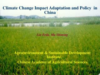 Climate Change Impact Adaptation and Policy  in China