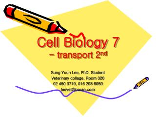 Cell Biology 7 - transport 2 nd