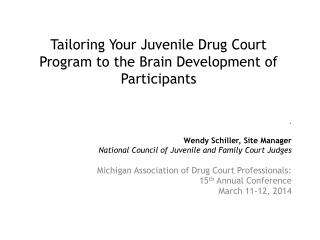 Tailoring Your Juvenile Drug Court Program to the Brain Development of Participants
